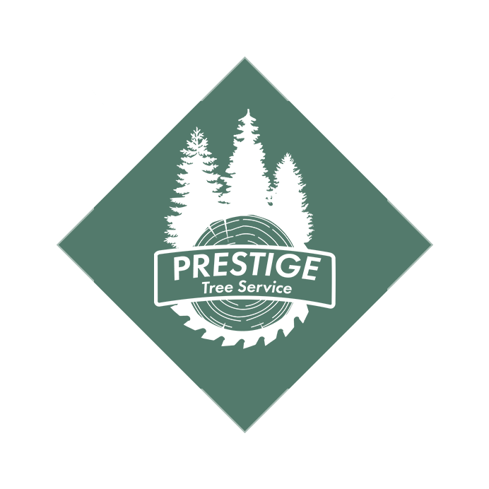 https://prestigetreeservices.com/